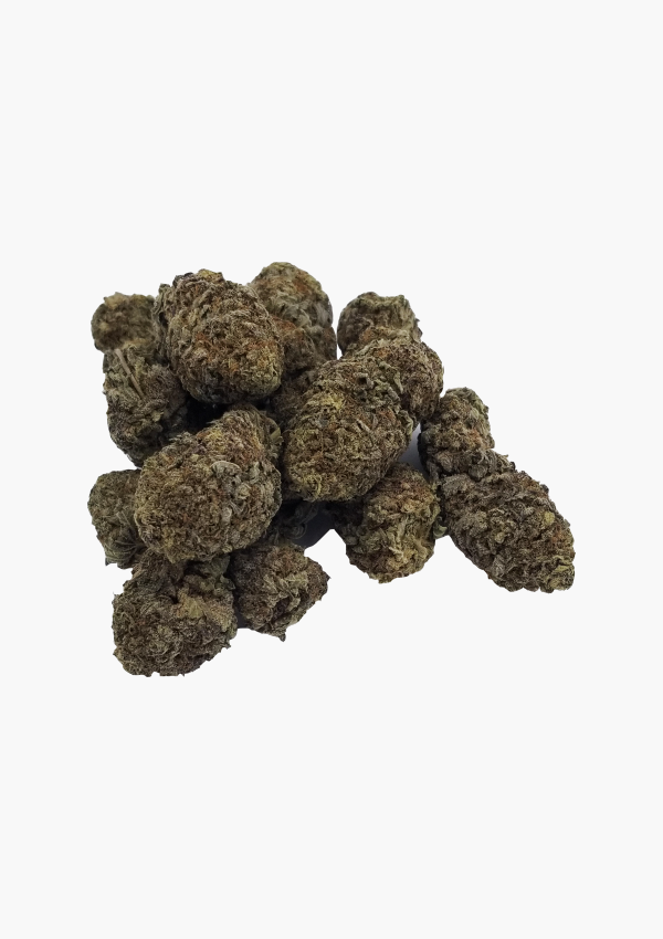 Holi Concentrates June Bud 2021